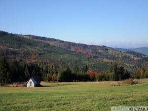 Jesień na Hali Boraczej