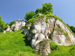 Ruiny zamku w Ojcowie od strony parku zdrojowego