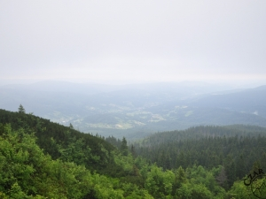 W stronę Zawoi z Przełęczy Brona