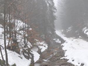Potok Ciepła - ścieżka dydaktyczno-przyrodnicza na Baranią Górę