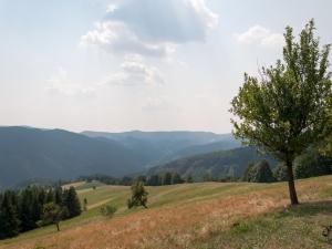 Beskid Śląsko-Morawski spod Chaty Kamenitý