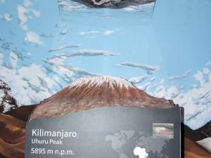 Makieta Kilimandżaro