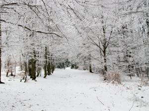 Im bliżej Równicy, tym bardziej zimowo :)