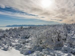 Tatry z podejścia na Babią Górę