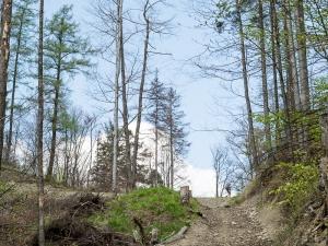 Na przełęcz Kołowrót
