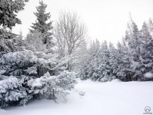 Akt 1. Zima, zima, zima... Pada, pada śnieg...