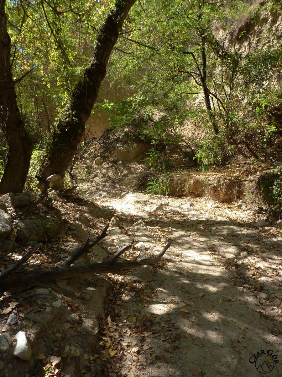 Droga wiodąca korytem wyschniętej rzeki