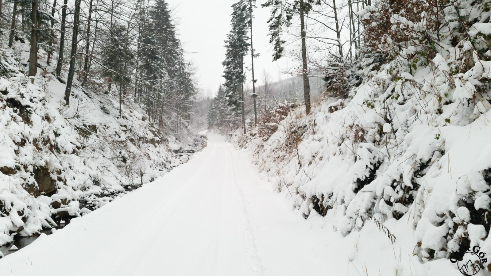 Droga z Żabnicy na Halę Boraczą. Jeszcze nie jest tak źle :)