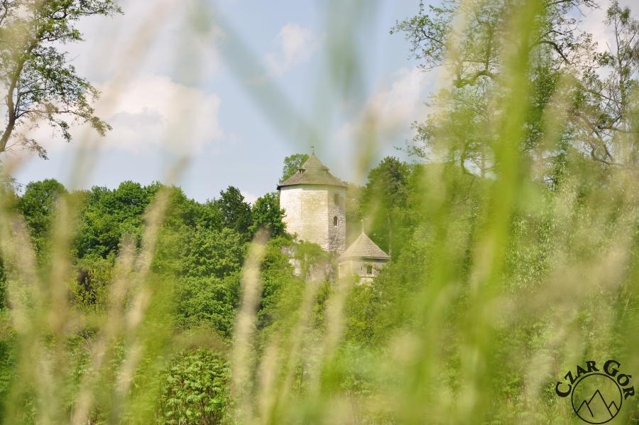 W stronę zamku w Ojcowie