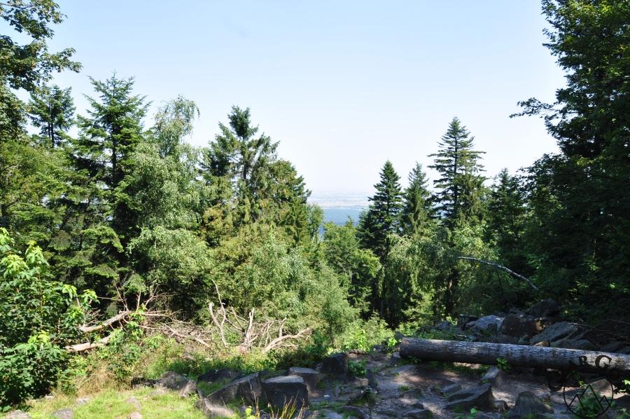 Panorama z Łysicy