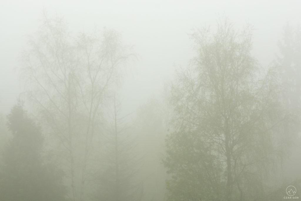 Żółtym szlakiem na Leskowiec