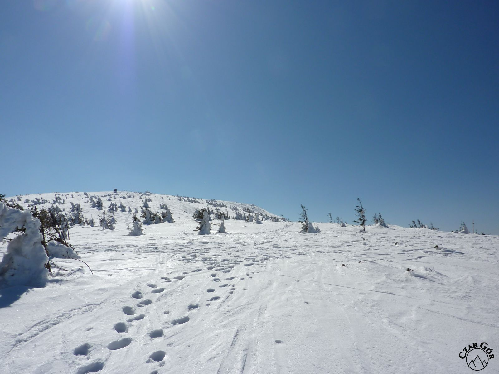 Kopuła szczytowa Pilska zimą