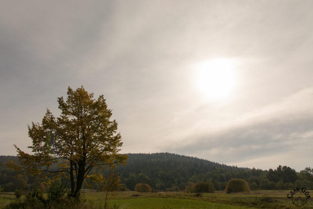 Kasina Wielka jesienią