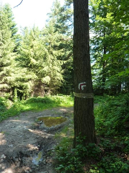Babica (728 m n.p.m.)