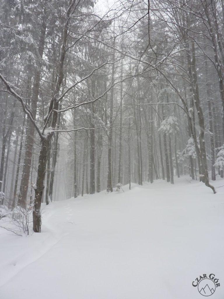 Biała sceneria
