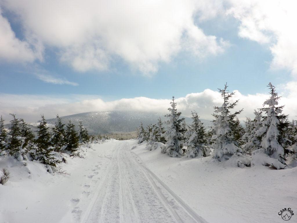 Pochmurny Śnieżnik