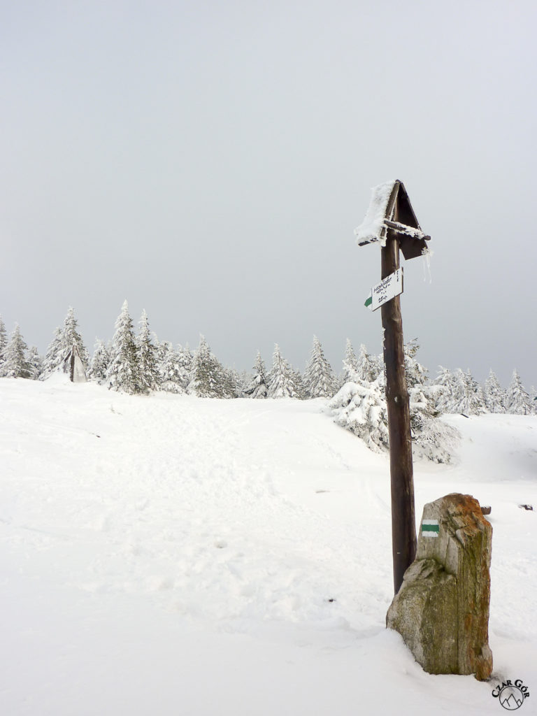 Śnieżnik spowiły chmury...