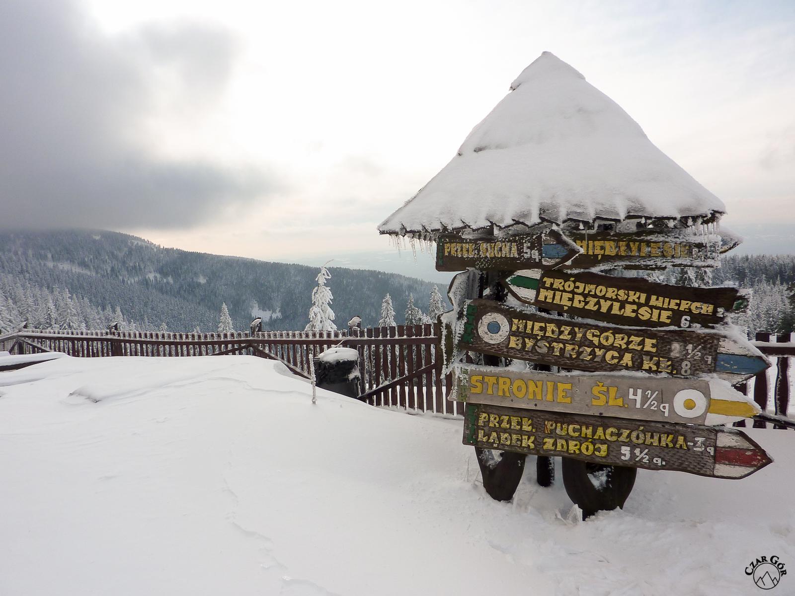 Okolice schroniska pod Śnieżnikiem