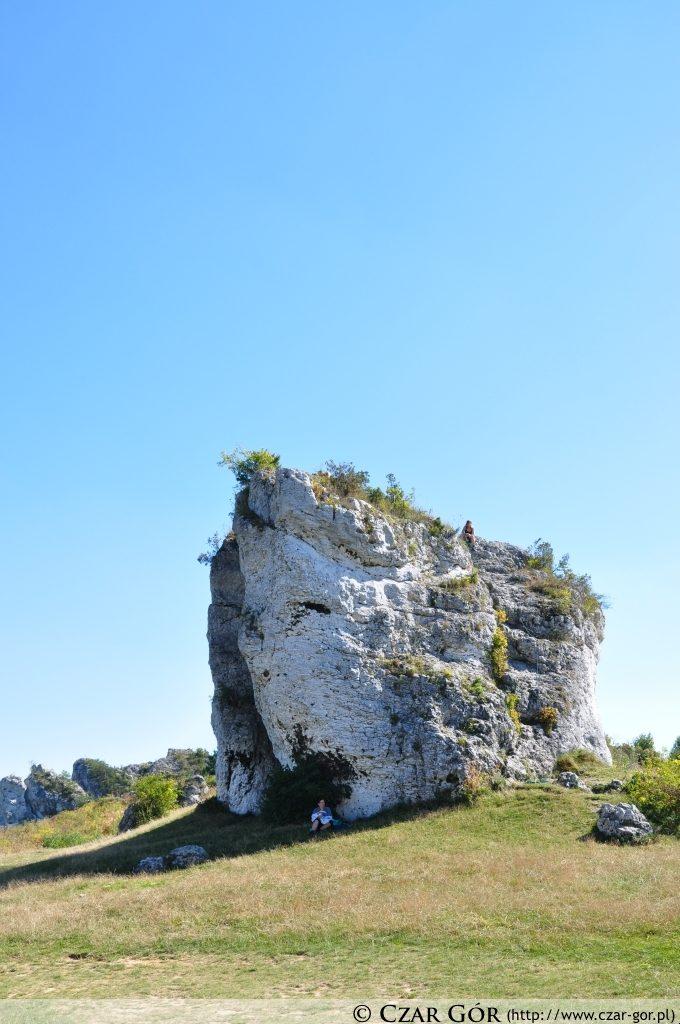 W pobliżu mirowskiego zamku