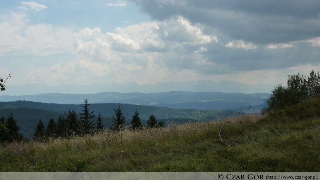 Panorama z Koskowej Góry w kierunku południowym
