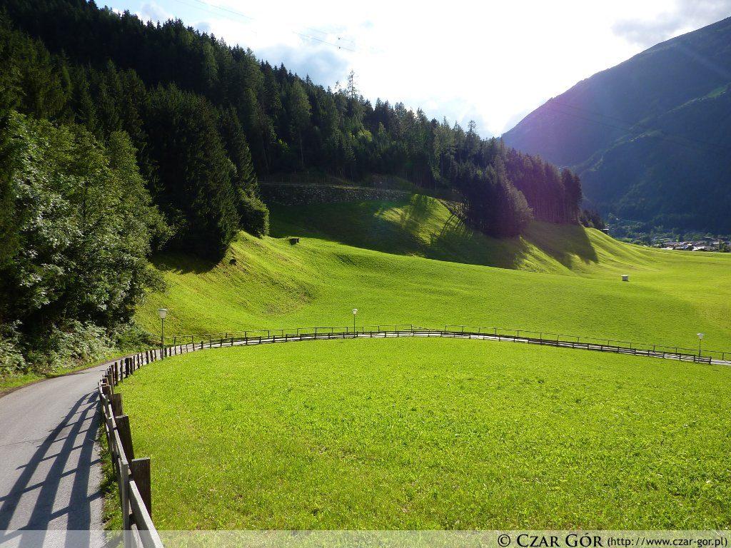 Alpejska zieleń. Mayrhofen