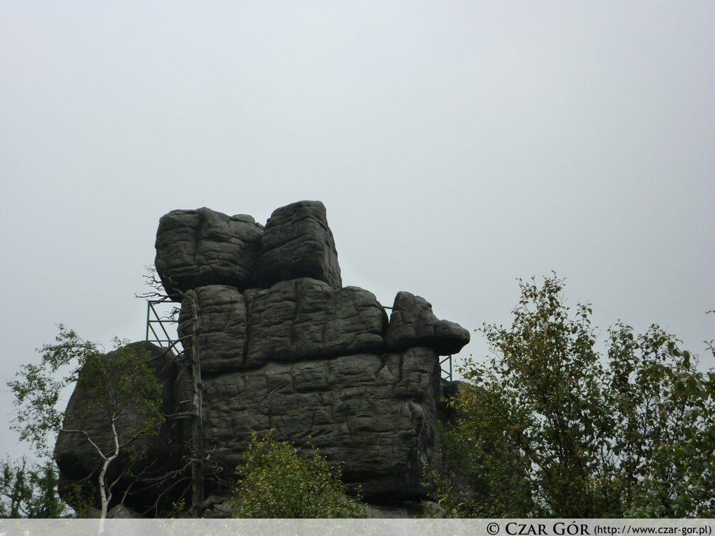 Tron Liczyrzepy - najwyższy punkt na Szczelińcu Wielkim