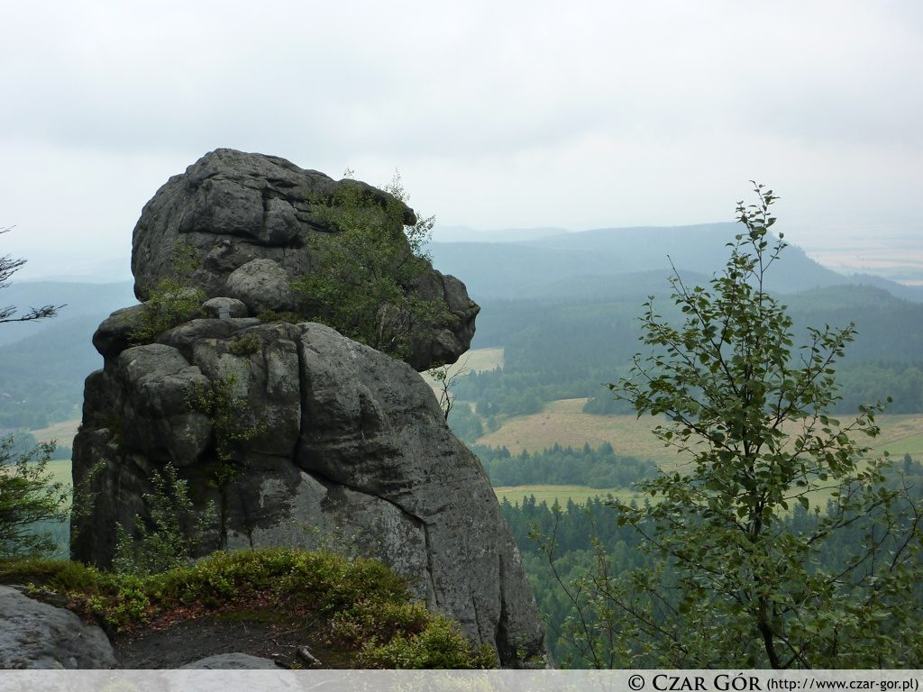 Małpolud - jedna z formacji skalnych Szczelińca Wielkiego