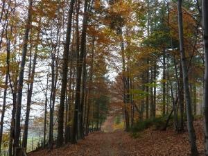 Jesień na szlaku