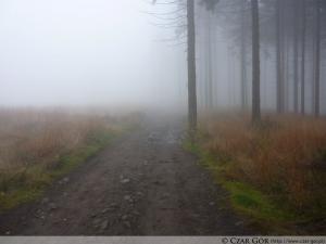 Powrót na Przełęcz Salmopolską