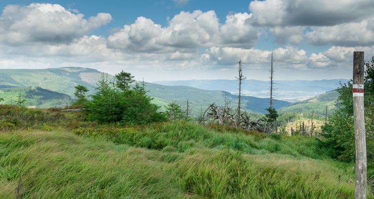 Widokowo przez Baranią Górę