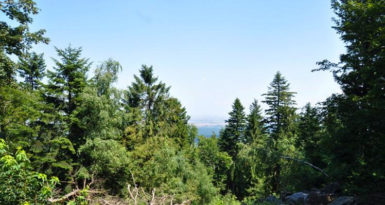 Na najniższym szczycie Korony Gór Polski – Łysica