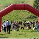 Brenna 2011 – DogTrekking, Puchar Polski