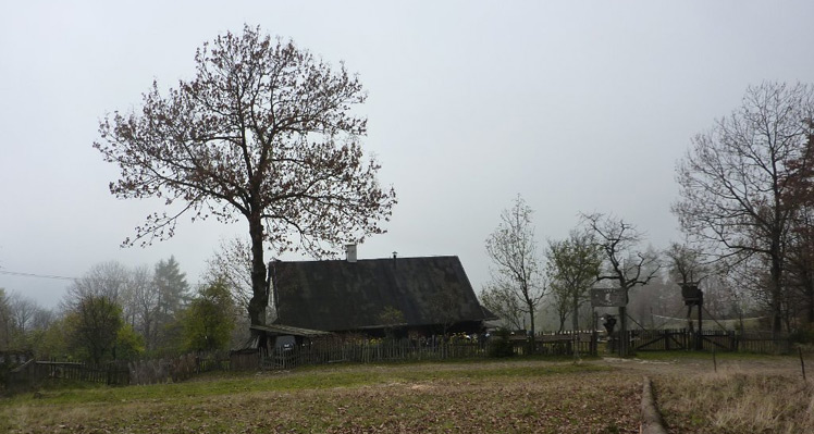 Krótka wycieczka na Grabową