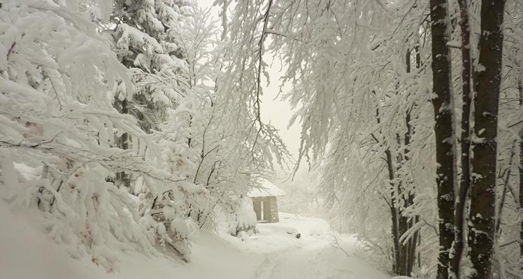 Z Szyndzielni na Stołów w głębokim śniegu
