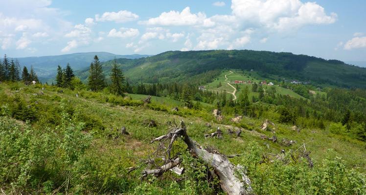 """""""W górach chodź zawsze tak, aby nie gubić znaków"""" – Beskid Żywiecki"""