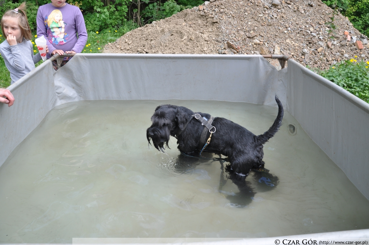 Zasłużony odpoczynek w przygotowanym basenie