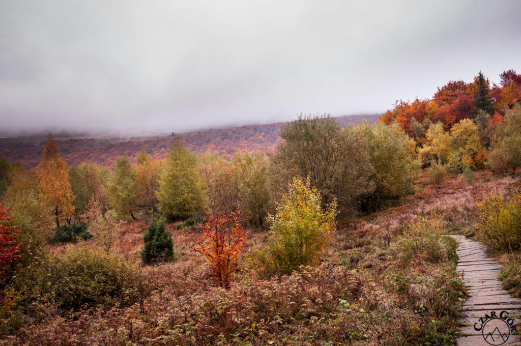 Jesienna droga na Połoninę Caryńską