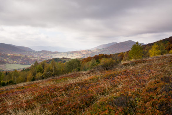 Bieszczadzka jesień