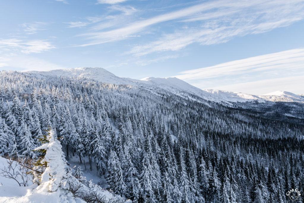 Zaśnieżona Babia Góra z Sokolicy