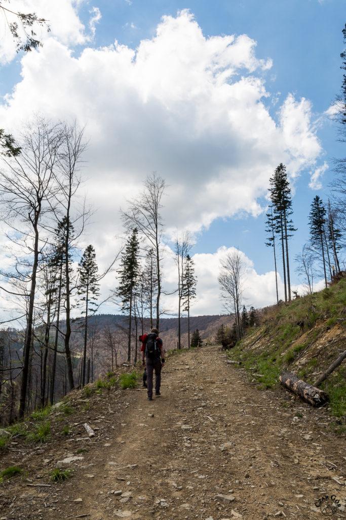 W stronę Klimczoka