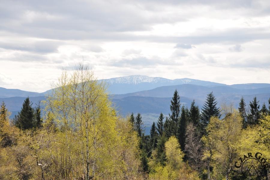 Babia Góra z Leskowca
