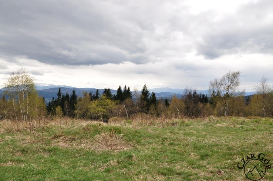 Od lewej - Babia Góra, Pilsko i schowana za drzewem Romanka z Leskowca