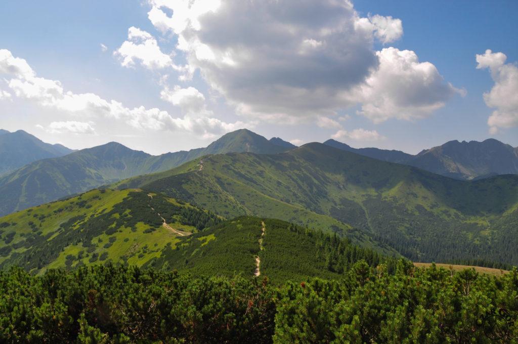 Grań Tatr Zachodnich z Grzesia