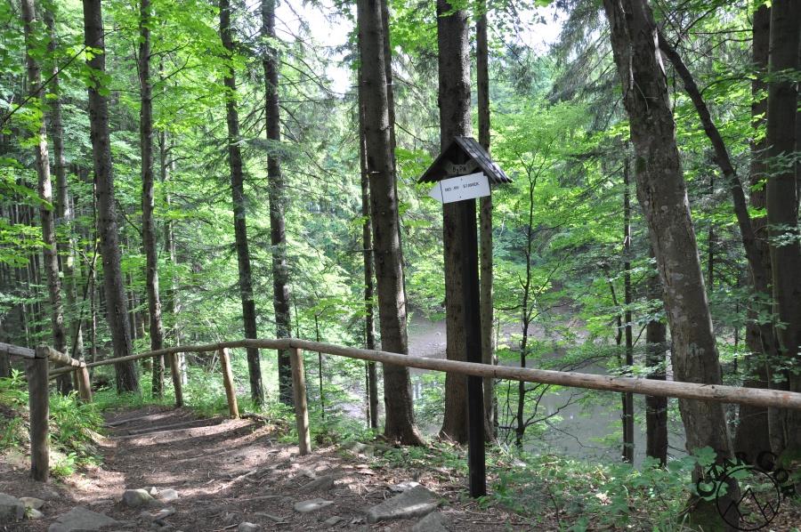 Mokry Stawek - droga ze schroniska do Przełęczy Krowiarek