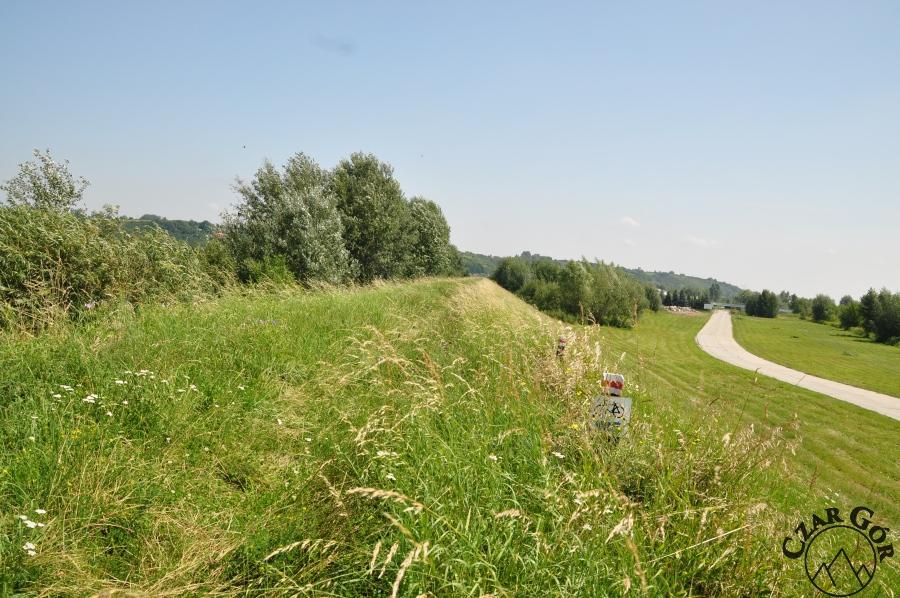 Czerwony, zarośnięty szlak prowadzący z Sandomierza w Góry Pieprzowe