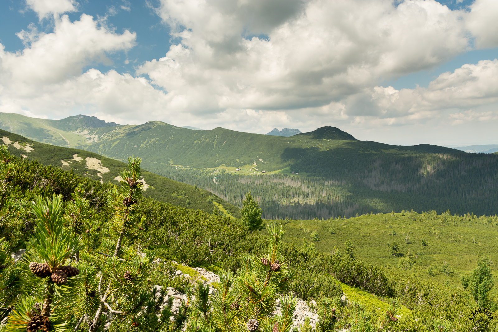 W stronę Doliny Gąsienicowej z żółtego szlaku na Krzyżne