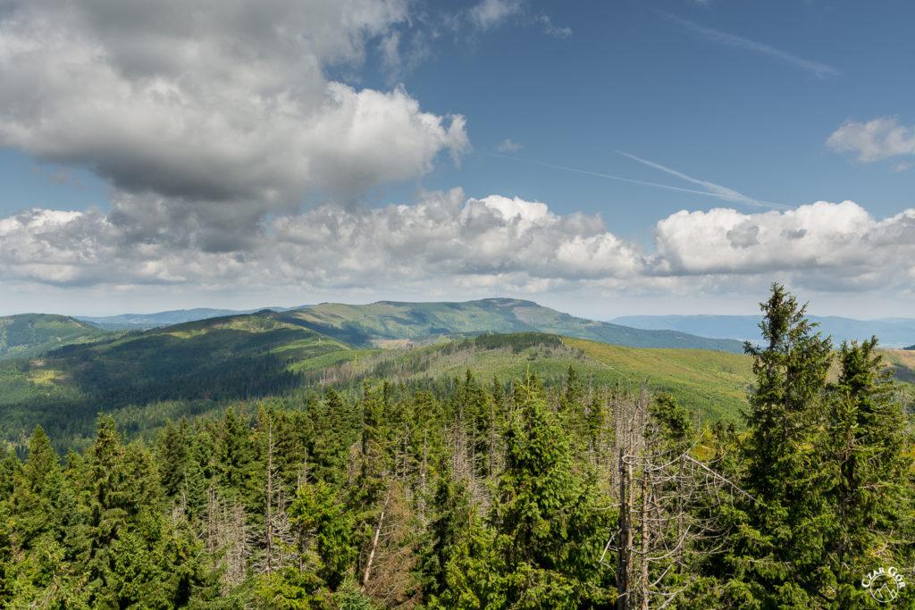 Szlak grzbietowy w stronę Skrzycznego z Baraniej Góry