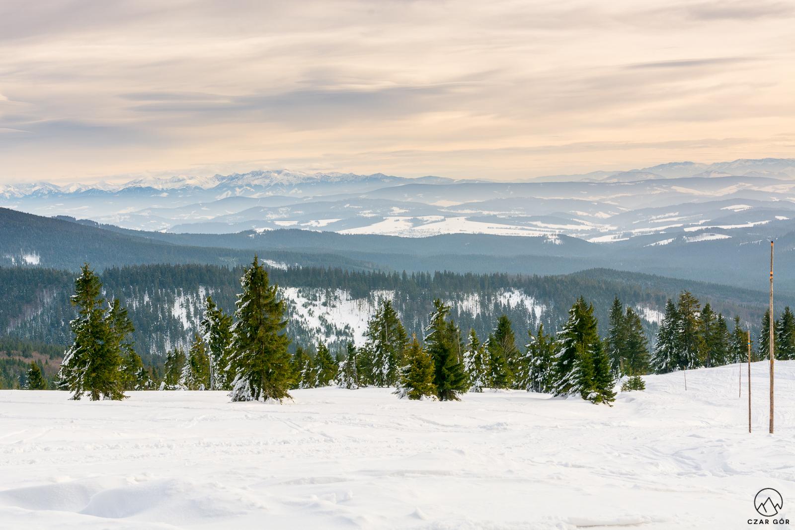 Tatrzańskie szczyty z Rysianki