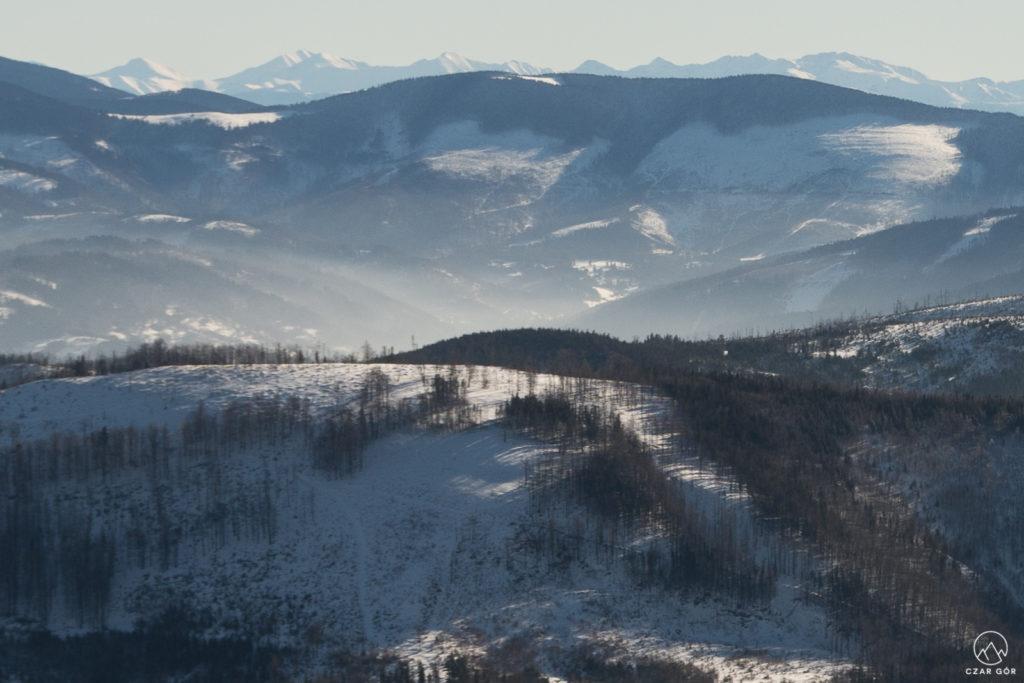 Beskid Żywiecki. W tle Tatry Zachodnie i Rohacze