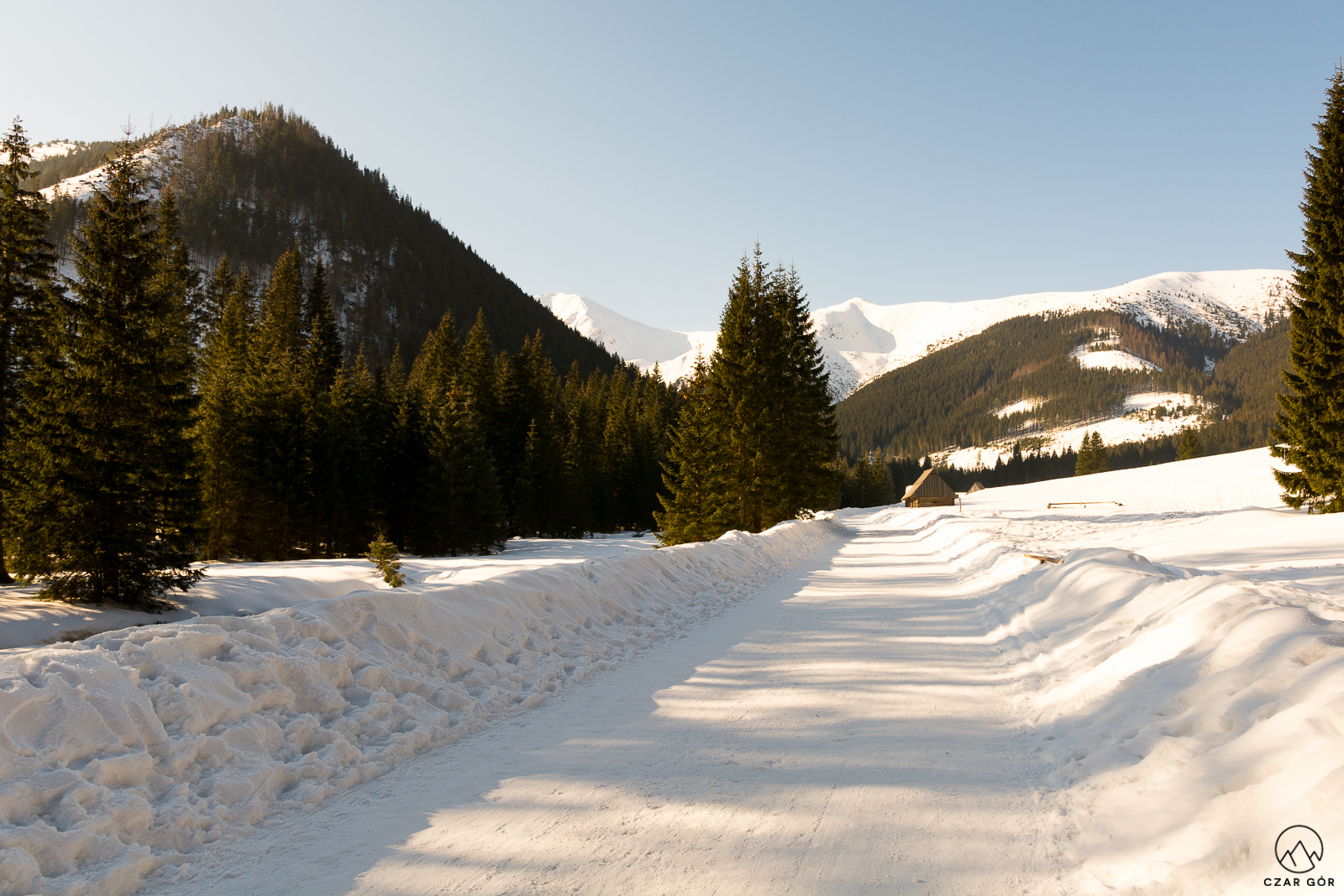 Dolina Chochołowska w zimowej aurze
